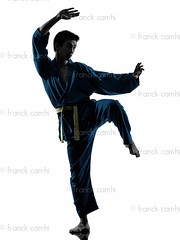 karate vietvodao martial arts man silhouette (Franck Camhi) Tags: shadow people white man male sports silhouette cutout pose asian person one 1 exercise fulllength young martialarts indoors karate whitebackground kungfu uniforms studioshot posture fighting adults isolated position oneperson caucasian oneman fightingstance exercising vietvodao oneyoungman combativesport