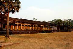 _MG_0986 (wombat.nyc) Tags: city sculpture architecture temple ancient cambodia vishnu khmer buddha buddhist siem reap timothy angkor wat hindu naga basrelief ramayana preah dravidian mahabharata fischetti vasuki devas asuras devatas suryavarmanii pisnulok