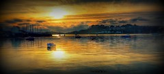 R Tamar evening... (PAUL YORKE-DUNNE) Tags: saltash plymouth sunset river tamar tidal boats golden reflections
