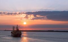 Reina - Basseterre (tribsa2) Tags: nederlandvandaag marculescueugendreamsoflightportal sunset sky seaside seascape sunrisesunset shoreline sea ship schip vessel vrachtschip cloud clouds