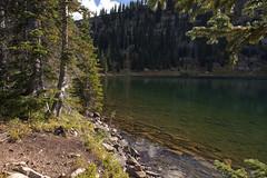 Remote (Jeff Mitton) Tags: lake forest mountains landscape colorado sprucefirforest whiteriverplateau earthnaturelife wondersofnature adamslake