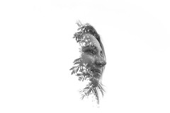 Girl and sheets (Double exposure) (Vincius_Fontes) Tags: person pessoa people black white branco e preto dupla exposio portrait double exposure exposition sheets folhas arvores woman mulher menina garota galho girl