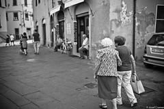 einkaufen gehen lucca (josefcramer.com) Tags: europe summer italy italia italien ventimiglia lucca pesaro gallipoli salerno murlo siena urban people street strase menschen leica m9 m 35mm summicron asph sommerurlaub josef cramer alassio menton strasenfotografie streetphotography