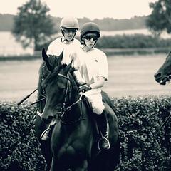 Feuermdchen (feldweg) Tags: feuermdchen german tote juniors cup galopp galopprennen bad doberan 2016 race racing rennen rennpferd pfiffig pfeifen vordemstart pferd horse cheval kon hest caballo cavallo