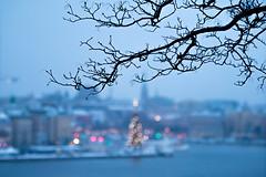 The Winter view from the City of Stockholm (ZoeEnPhos) Tags: stockholm kinnevikgranen fjllgatan utsikt cityscape bokeh oskrpa winter christmastree julgran canonef70200mmf28lisusmii canoneosm3 snow sn sverige sweden