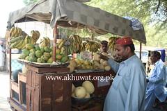 Fresh Fruit Stall (Akhuwat BPP) Tags: akhuwat micro finance interest free loans pakistan sindh brotherhood entrepreneurship fruits stall street vendor