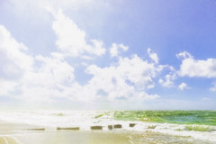 Groynes contre jour (jgokoepke) Tags: sylt westerland germany northsea groynes surf beach shore