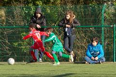 IMG_4949 - LR4 - Flickr (Rossell' Art) Tags: football crossing match futbol futebol futbal schaerbeek ftbol fodbold calcio fotboll jeune  u9 fusball  fotbal jalkapallo  futbalo nogomet evere peile amical sepakbola bng pikanona   whitestarwoluwe