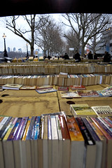 Knowledge, knoweldge..and more knowledge (Lady_of_Avalon) Tags: trees winter england london perspective books