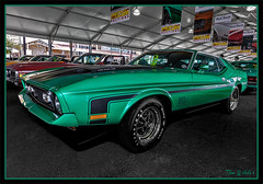 1971 Ford Mustang Mach 1 Fastback 429/370 HP, Automatic (Wilder PhotoArt) Tags: auto ford canon florida butterflies fordmustang antiqueautos classiccars automobiles fmc mecum flickrsbest flickrdiamond canoneos5dmarkii mecumautoauction mecumkissimmee mecumautoauctionkissimmee