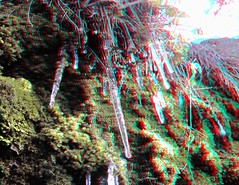 IMG_5549-DM-Icicles1-SX1JPG (EdwardMitchell) Tags: red canon lumix stereoscopic 3d spokane cyan anaglyph powershot sx1 gh2