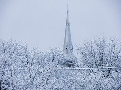 Church, with trees (andyscamera) Tags: trees winter snow ontario canada church cathedral spire peterborough peterboroughcounty andyscamera stpeterinchainscathedral utata:project=tw358