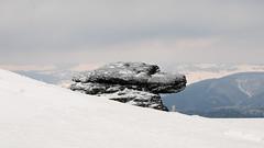 kőkutya / stone dog (debreczeniemoke) Tags: winter mountains hiking transylvania erdély stonedog tél túra hegyek rozsály canonpowershotsx20is igniş kőkutya