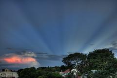 With stripes (casalidebora) Tags: cloud sun tree arvore nuvem sunbeam hdr raiodesol