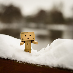 It used to be spring, right? (dennisbecher) Tags: danbo nikkor50mmf14 nikond800