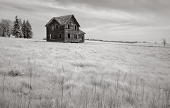unfulfilled destiny (Rodney Harvey) Tags: wood blackandwhite southdakota rural skeleton lost decay empty ghost shell abandonedhouse infrared weathered plains hollow unfulfilled