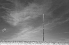 Empty (Tinina67) Tags: sky bw field clouds noir break empty leer wide wiese rules pole tina sw blanc champ odc weit ourdailychallenge tinina67