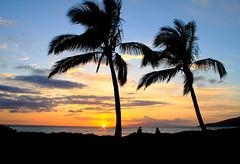 Maui palm trees (a56jewell) Tags: sunset beach hawaii maui palmtree a56jewell
