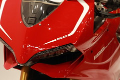 untitled (D's Photo) Tags: bike ride motorcycles motorcycle vehicle ducati rider duc