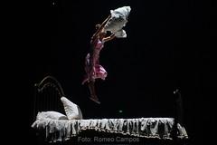 RO1_0586 (Romeo Campos Fotgrafo - Abelha Digital) Tags: brasil de soleil do circo du sp romeo cirque campos palhao fotografo lona malabares equilibrio malabarismo equilibrista corteo acrobacia malabaristas equilibrismo contorcionismo artistare crows