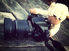 Monkey taking snaps (Shaunrainer) Tags: world monkey nikon teddy snap dorset bournmouth monkeyworld iphone5 d5200 mammothfilter