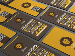 Techlion Corporate Branding Project (lemongraphic) Tags: logo lion brand businesscard cdlabel corporateidentity yellowlion lionlogo verticalbusinesscard yellowbusinesscard brandingstationary lioncdlabel