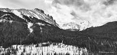 Never Summer Wilderness Area Panorama BW (Striking Photography by Bo Insogna) Tags: winter bw snow black mountains nature forest landscape landscapes colorado fineart rockymountains rmnp wilderness peaks rockymountainnationalpark blackwhitephotos coloradonature neversummerwilderness coloradolandscapes mtrichthofen howardmountain mountnimbus jamesboinsogna mountcumulus coloradonaturelandscape mountcirrus