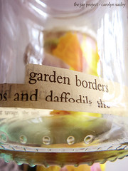 daffodils (Carolyn Saxby) Tags: distortion blur reflection green glass yellow spring movement text refraction jar daffodils blobs thejarproject carolynsaxby
