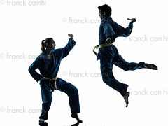 karate vietvodao martial arts man woman couple silhouette (Franck Camhi) Tags: shadow 2 two people woman white man male sports girl silhouette female cutout pose asian person one jumping vietnamese exercise fulllength young knife couples martialarts indoors karate whitebackground kungfu uniforms studioshot posture fighting facetoface adults leap twopeople isolated position caucasian fightingstance exercising vietvodao combativesport