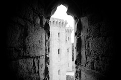 "Raglan Castle • <a style=""font-size:0.8em;"" href=""http://www.flickr.com/photos/32236014@N07/8653919982/"" target=""_blank"">View on Flickr</a>"