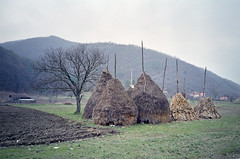 A cloudy day in Dobra (Daire Quinlan) Tags: bridge color colour film 35mm nikon holidays fuji cloudy 28mm serbia haystack danube compact 400asa dobra asa400 c41 400h 2013 af600 litetouch compact35mm