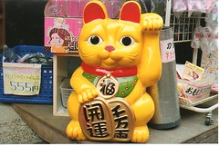 Maneki Neko (Concrete Treehouse) Tags: camera film up japan cat gold tokyo solar store paw minolta neko left yen maneki 555 beckoning xg1
