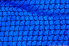SHADOW PLAY (marc falardeau) Tags: blue toronto lines fence spring nikon frost april amateur eastofyonge gayphotographer shadowl d300s