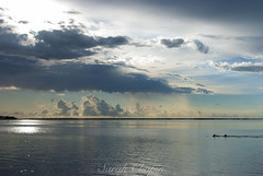 Fred Howard Park; July 24, 2016 (Sarah Chopin) Tags: sunset water nature florida palmtree clouds gulfofmexico ocean dslr photooftheday photography dolphin nikon nikon3000 nikond3000 night
