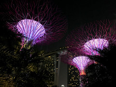Singapure (John McSalas) Tags: singapur singapure marinabaythesands gardenbythebay financialdistrict city marina bay sands iphone6