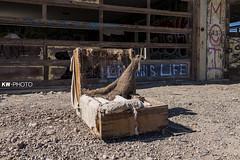 Salton Sea - Bombay Beach (eyeKelly) Tags: abandoned chair saltonsea bombaybeach