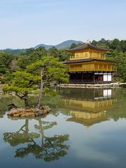 Kinkakuji VII (Douguerreotype) Tags: tree garden water pond buddhist buildings kyoto architecture gold reflection park japan shrine temple