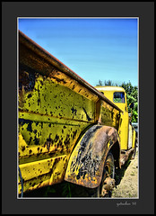 Yellow with Rust (the Gallopping Geezer 3.8 million + views....) Tags: vehicle automobile truck car transportation travel old vintage historic abandoned decay decayed worn faded derelict forgotten masonmotors mason mi michigan upperpeninsula collection graveyard display canon 5d3 tamron 28300 geezer 2016