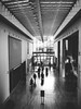 { The Art Institute of Chicago } (Web-Betty) Tags: fujineopan1600 vscofilm bnw artinstitueofchicago chicago illinois blackandwhite art architecture building