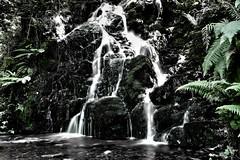 cascada baztan (rosaselene) Tags: valle baztan navarra cascada spain waterfall larga exposicion long exposure agua water silk sedosa valley