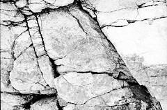 Stone (Claudio Taras) Tags: claudio contrasto canona1 film 35mmfilm fomapan 200 rodinal taras sardegna grain granito texture bokeh bw biancoenero bianco monocromo monochrom