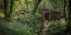 Verdes 05 (san_tipazos) Tags: coristanco verdes galicia nature molino cabaa canon eos 6d 2470 2470mm