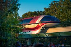 monorail, sunset light (imageneer) Tags: anaheim california sunset sony disneyland rx100m3 themepark monorail