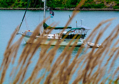 Lazy days. (Omygodtom) Tags: abstract art flickr boat river nikkor outdoors scene scenic senery nature nikon d7100 tamron90mm dof pov natural