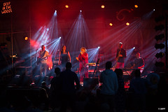 20160903_DITW_00099_WTRMRK (ditwfestival) Tags: ditw16 deepinthewoods massembre