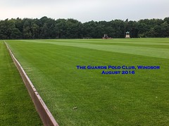 Guards Polo Club Aug 2016 01 T (Timelapsed) Tags: sport ourdoors horseback hourse windsor windsorgreatpark ladiespolo