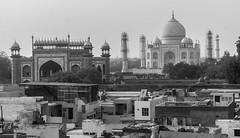 Agra, India (DitchTheMap) Tags: 2016 agra architecture bw blackandwhite building india tajmahal uttarpradesh uttarpradesh2016 asia black brace braces culture day emperor empire famous flickr indian islam landmark mahal marble mausoleum minaret monument palace place pradesh reflection seven sights sightseeing sky structure summer symmetry taj temple tourism tourist tower traditional travel uttar water white wonders world