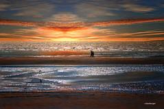 promenade romantique (nicole boxberger) Tags: promeneurs soleil mer pepites reflets lumiere