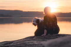 Sunset, puppy and the love of your life. Nothing beats that (Kasinfoto) Tags: puppy love girl sweden arvika sunset summer colors dog nikon d610 tamron