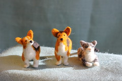 Fiber Friends - Tiny felt pet portraits (Mirandy Pandy) Tags: dog animals mobile felted cat felt petportrait babymobile
